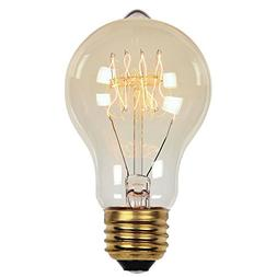 0413500 60 Watt A19 Clear Timeless Vintage Inspired Bulb wit