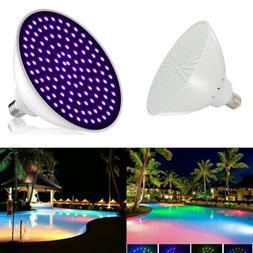 Pool Light Bulb Light Bulbs | Light-bulbs biz