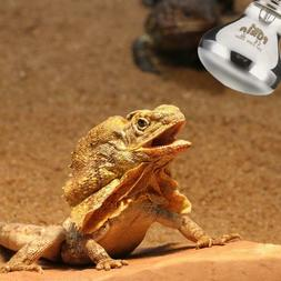 25/50/75/100W Thermal Light Daylight Snake Lamp for Reptile
