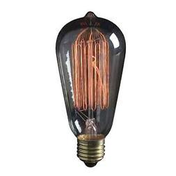 30W S21 Vintage Incandescent Light Bulb 120V L2780 12 PACK