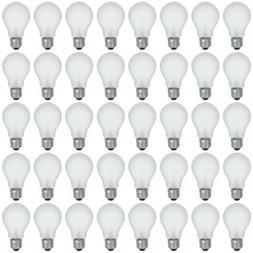 48 Pack of 100W High Voltage Incandescent Light Bulbs, 220 V