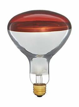 Pyramid Bulbs 64965 Heat lamp bulb 250 Watts R40 Reflector i