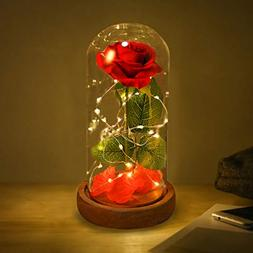 Beauty and Beast Roses, Dream Flower Red Silk Rose with LED