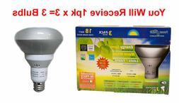 Compact Fluorescent Floodlights, 18-Watt CFL, R30  3-Bulbs