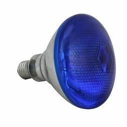 Northlight Incandescent Weatherproof 100 Watt In/Out Blue Fl