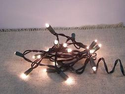 Indoor 20 Clear Teeny Bulbs Lights String/Strand Green Cord