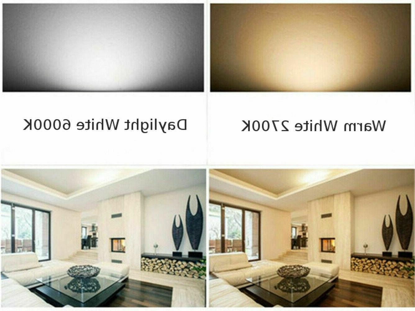 100W Equivalent 75-Chip Light 1850lm Cool 6000K