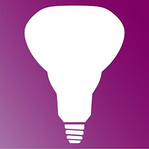 Philips 65-Watt Light