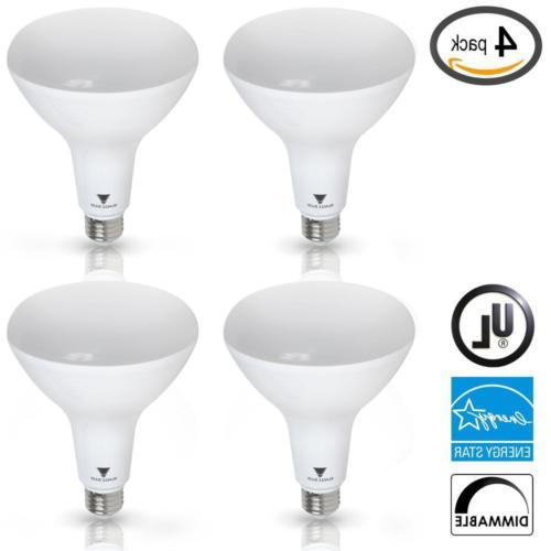 Triangle Bulbs 4-Pack 12-Watt 80-Watt Soft White Floodlight