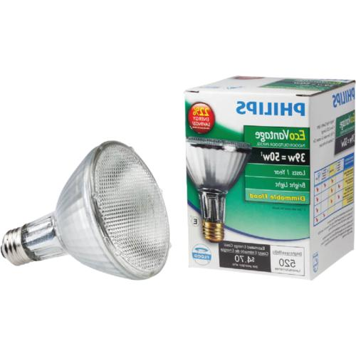 419747 halogen par30l equivalent flood