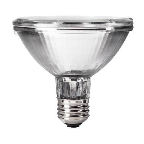 Philips Dimmable Halogen Spot Light