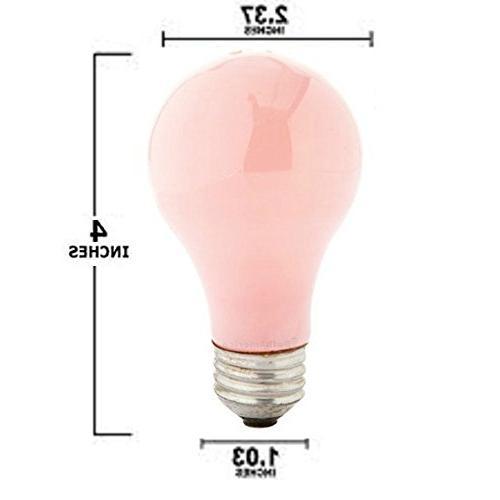 Pack Of 6 Watt A19 Incandescent Base Bulb