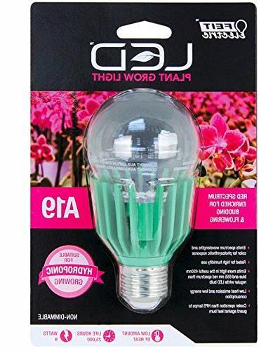 bulb plnt a19