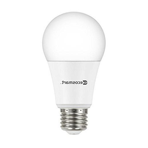 EcoSmart Daylight A19 Bulb