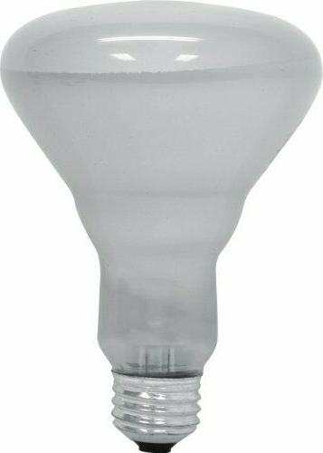 GE Lighting 65-Watt 610-Lumen R30 Floodlight Bulb, Soft Whit