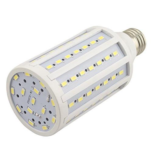 studio light bulb daylight balanced