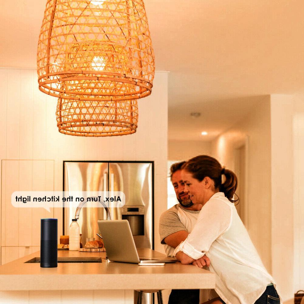 Light Bulb Alexa/Google Home App