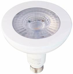 LED Outdoor Bright White Light 2 Bulbs Brightness 1300
